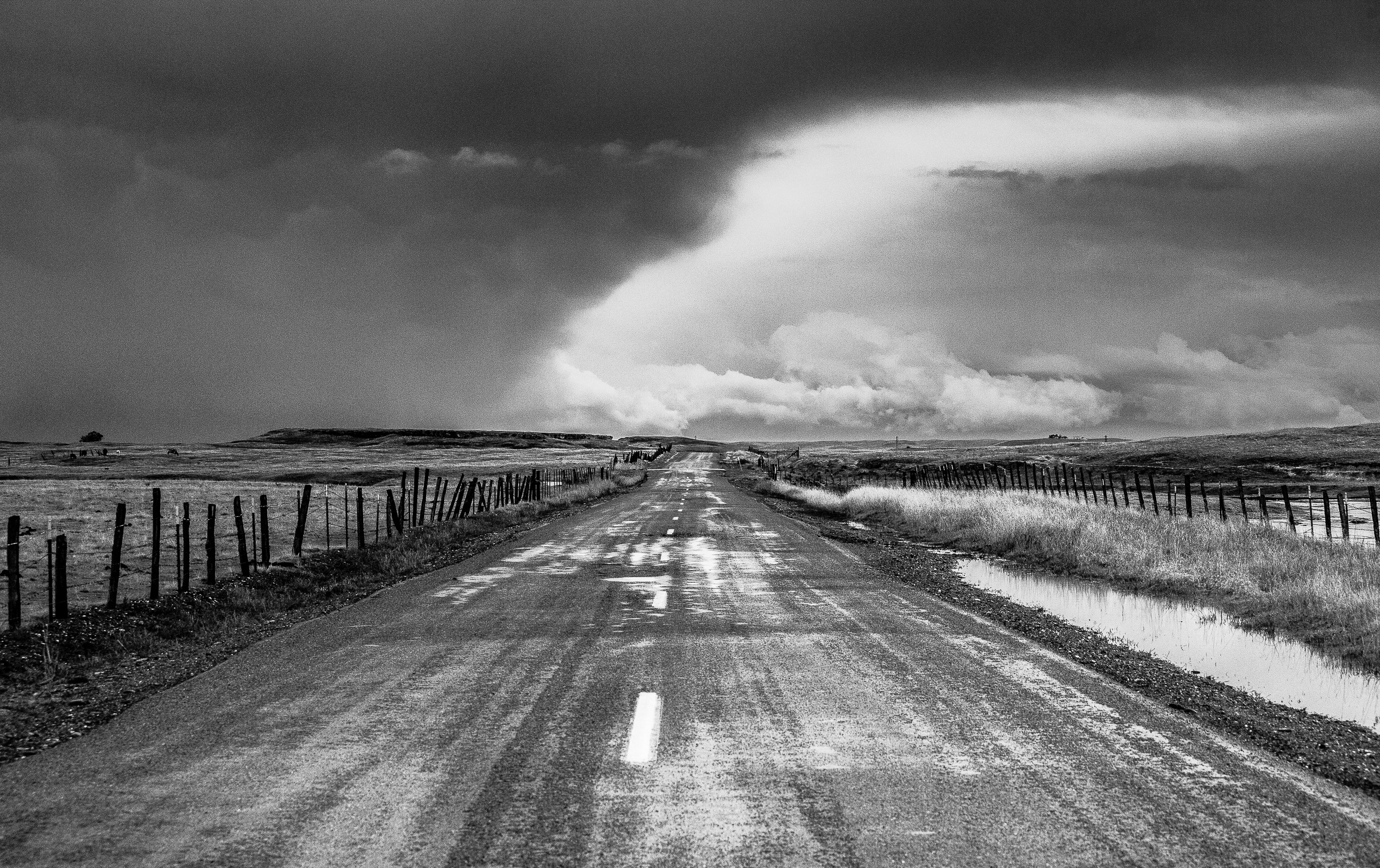 Willms Road