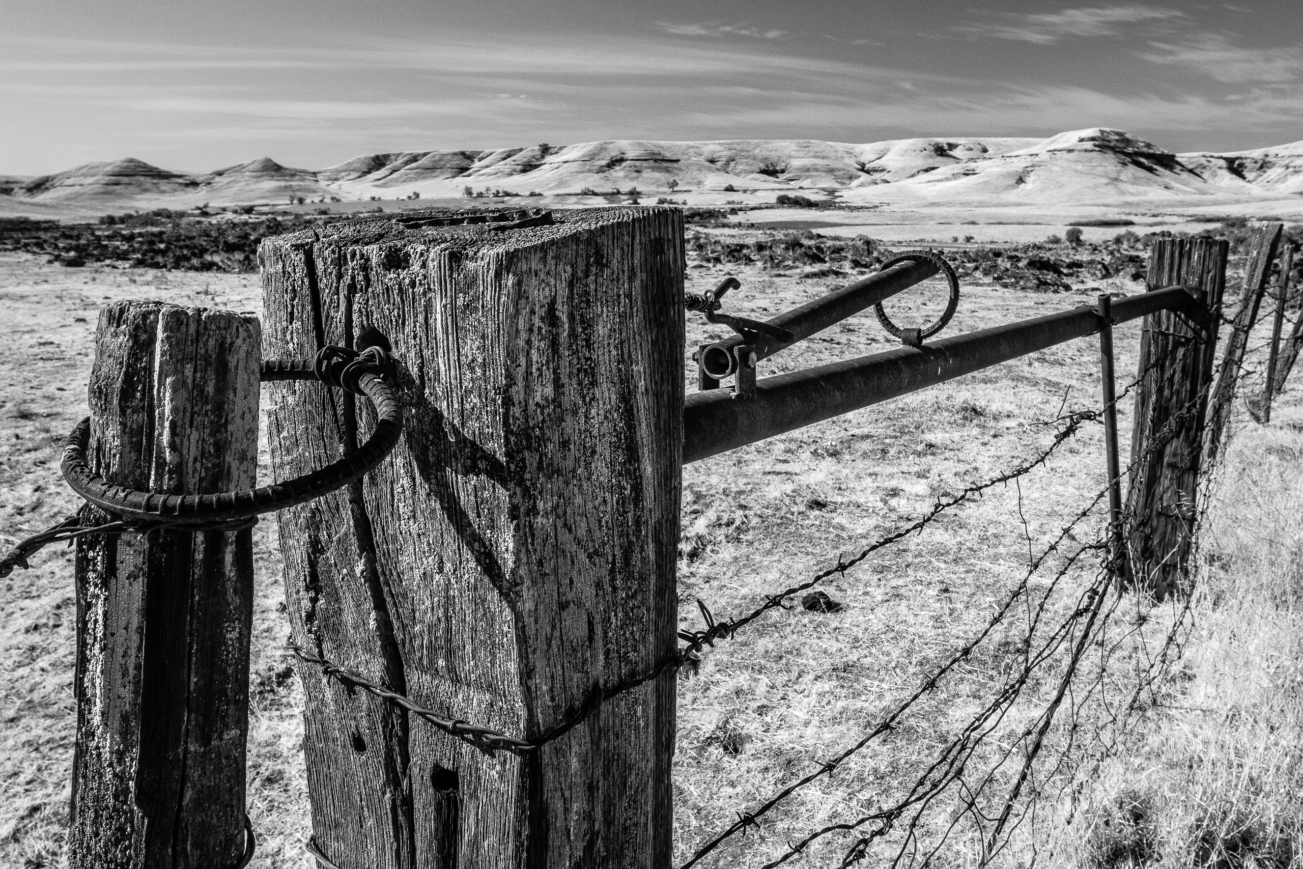 Working Fence With A View