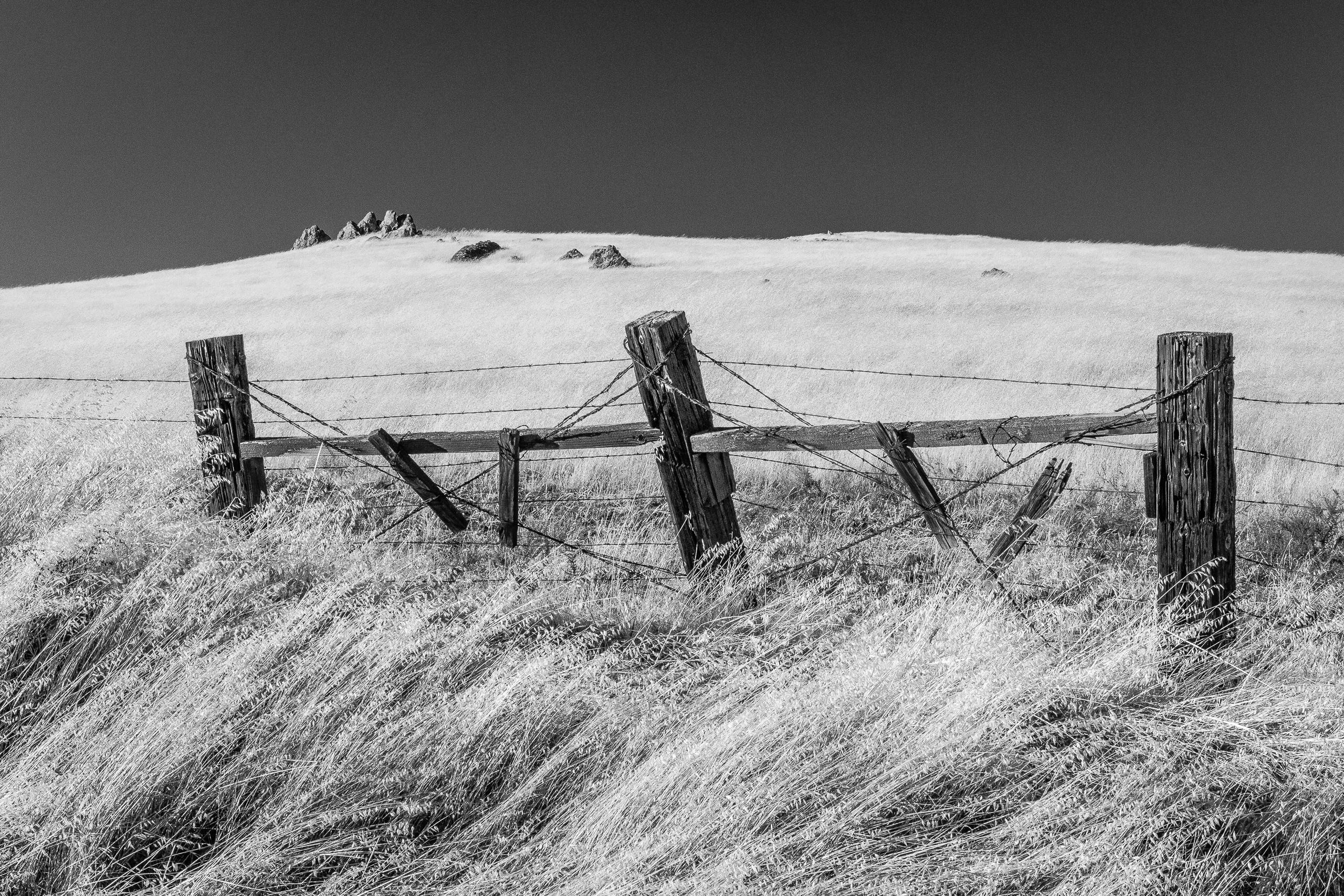 Three Fence Posts
